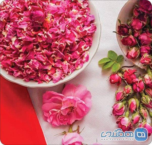 خواص گل محمدی و روش های استفاده از آن